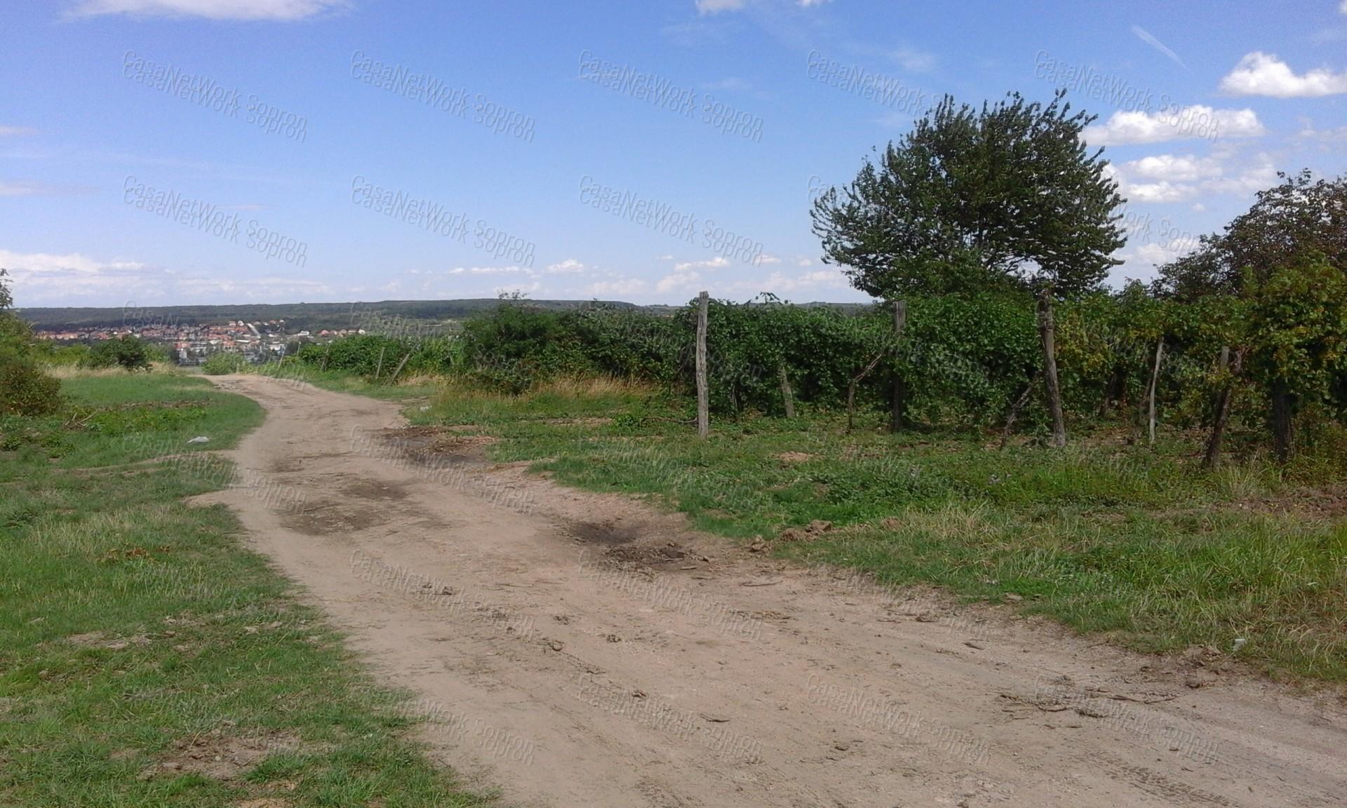 Eladó mezőgazdasági terület, Győr-Moson-Sopron megye, Fertőrákos - sz.: 164301340 - CasaNetWork.hu