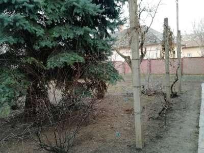 Eladó családi ház - Tiszaföldvár / 22. kép