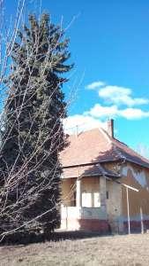 Eladó családi ház - Tiszaföldvár / 11. kép