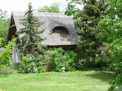 Jászszentandrási  tanya  lakóházzal csodás környezetben eladó!