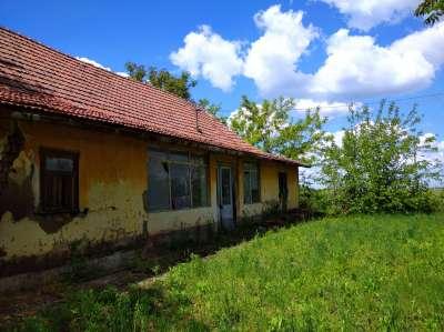 Eladó kert, gyümölcsös - Tiszavárkony / 1. kép