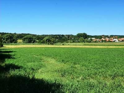 Eladó mezőgazdasági terület - Balatonszőlős / 1. kép