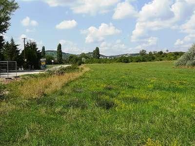 Eladó mezőgazdasági terület - Balatonfüred / 1. kép