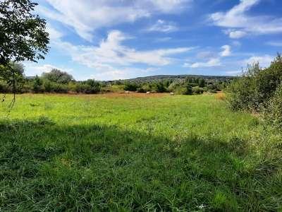 Eladó mezőgazdasági terület - Balatonalmádi / 1. kép