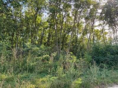 Eladó erdő - Koroncó / 3. kép