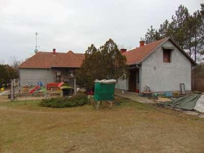 Eladó tanya - Lajosmizse (Város szélén) / 22. kép