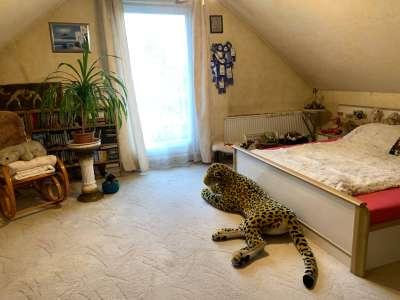 Eladó családi ház - Budapest XVI. kerület / 10. kép