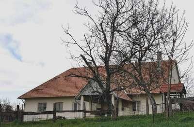 Eladó birtok - Nagygörbő / 1. kép